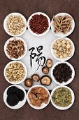 Chinese herbal medicine with calligraphy script on rice paper with yang herb selection. Translation