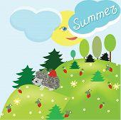 Summer Fantasy Landscape With Hedgehog