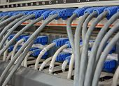 Ethernet Cables Connected To Computer  Internet Server