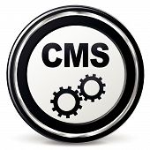 Vector Cms Icon