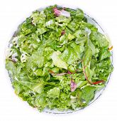 Top View Of Fresh Italian Lettuce Mix
