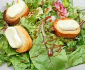 Green Salad With Goat Cheese And Bread On Plate