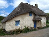 Quaint Thatched Cottage