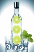 Bottle Of Vodka With Lime, Mint And Ice Cubes