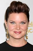LOS ANGELES - JUN 19:  Heather Tom at the ATAS Daytime Emmy Nominees Reception at the London Hotel o