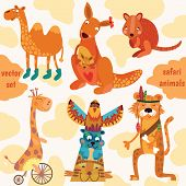 Safari Animals:quokka, Tiger, Camel, Giraffe, Kangaroo In Vector.