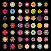 49 kinds of flowers
