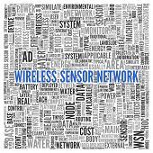 Close up Blue WIRELESS SENSOR NETWORK Text at the Center of Word Tag Cloud on White Background.