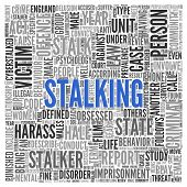 Close up Blue STALKING Text at the Center of Word Tag Cloud on White Background.