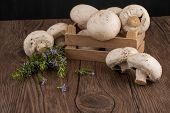 Champignons In A Wooden Box