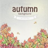 Background image for your text with autumn leaves and berries of viburnum, acorns and chestnuts