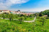 View over Prague from Strahov Monastery