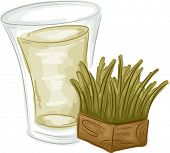 Illustration Featuring a Glass of Wheatgrass and a Block of Fresh Wheatgrass on the Side