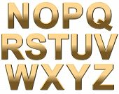Gold Text Letters on White