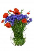 Bouquet of wildflowers - poppies and cornflowers in a glass vase isolated on white background studio