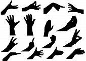 Vector Illustration A Set From 16 Silhouettes Of Hands