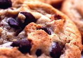 picture of chocolate-chip  - Chocolate chip cookie - JPG