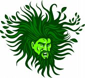 pic of flowing hair  - Illustration of a Green Man head face with flowing hair and leaves growing at tips viewed from front don ein cartoon style - JPG