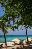 image of boracay  - Sun umbrellas and beach chairs on tropical beach Philippines Boracay - JPG