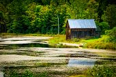 stock photo of wooden shack  - An old rustic wooden shack cottage on the waterfront surrounded by lush green foliage - JPG