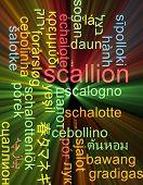 picture of scallion  - Background concept wordcloud multilanguage international many language illustration of scallion glowing light - JPG