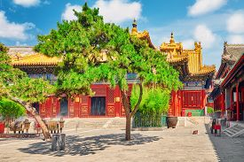 stock photo of lamas  - Yonghegong Lama Temple.The Hall of Harmony and Peace.Lama Temple is one of the largest and most important Tibetan Buddhist monasteries in the world.