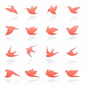 Birds. Vector Template Set. Elements For Design.