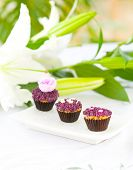 Three mini cupcakes in assorted design served on white plate.