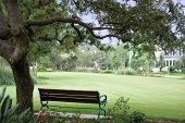 picture of wrought iron  - a bench in a quiet park waits for someone to relax here