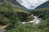 Larch, ravine of mountain river with rocks. Siberia. Buryat republic. Russia. East Sayan mountains.