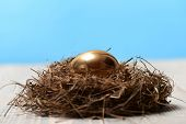 Bird Nest With Traditional Painted Golden Egg, Banking, Easter poster