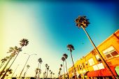 Palm Trees And Picturesque Stores In Newport Beach Seafront, Orange County. Southern California, Usa poster