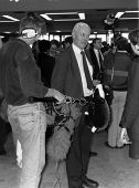 BRIGHTON, ENGLAND-OCTOBER 1: Tony Benn (C) Labour party Member of Parliament for Chesterfield, carri