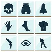 Physique Icons Set With Leg, Palm, Eye And Other Foot Elements. Isolated Vector Illustration Physiqu poster