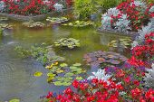 A pond and a flower bed in fine park in Canada