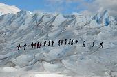 Trekking  On A Glacier