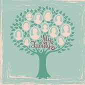 Vintage Genealogy Tree. Genealogical Family Tree Vector Illustration. Genealogical History, Family T poster
