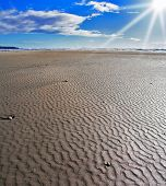 Sandy shallow on a beach of island Vancouver during ocean outflow