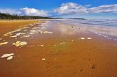 Wide sandy beach and sea foam on sand during outflow