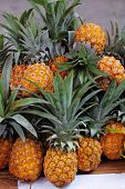 The picturesque holiday bazaar stall on the eve of Sukkoth. Pineapples