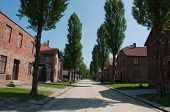 image of auschwitz  - prisoners quarters in concentration camp Auschwitz in city Oswiecim Poland - JPG