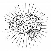 Brain. Hand Drawn Vector Illustration With Brain And Divergent Rays. Used For Poster, Banner, Web, T poster
