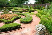 Tryon Palace gardens
