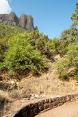 Chisos Mountains peak and green desert