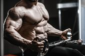 Brutal Strong Bodybuilder Athletic Men Pumping Up Muscles With Dumbbells poster