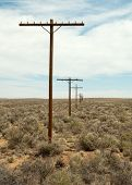 picture of paleozoic  - old route 66 telephone poles - JPG