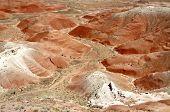 pic of paleozoic  - Painted Desert - JPG