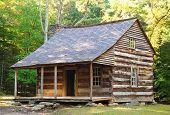 historic cabin in Cades Cove