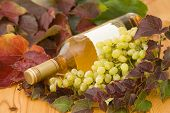 Bottle Of Wine With Grapes And Leaves