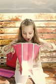 Girl On Surprised Face Unpacking Shopping Bags Or Presents, Bench On Background. Kid Girl With Long  poster